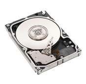 HP 300GB U320 SCSI 15K 411089-B22 HDD Server