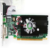 POINT OF VIEW GEFORCE GT610 Graphics Card