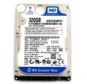Western Digital Blue 320GB HDD