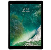 Apple IPAD PRO 12.9 inch 256G Cellular WI FI Tablet