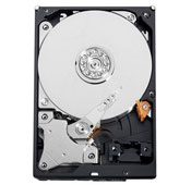 Western Digital AV-GP 500GB WD5000AVDS HDD