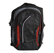 Vaio red Laptop Backpack