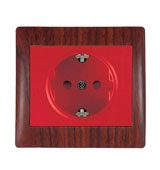 Deland Electric ARIYA UPS Socket Outlet with Earth